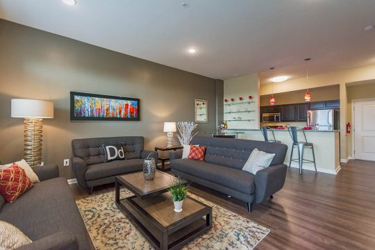 delaware-living-room-2
